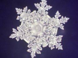 Krystaly wodne